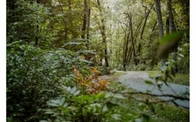 VISIT OWATONNA   Conquer the Trails!